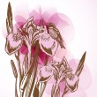 Floral background with pink irises — Imagen vectorial