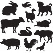 Silhouettes of hand drawn farm animals. Dog, cat, duck, rabbit, cow, pig, cock, hen, swan, puppy, kitten. — Vector de stock #17411925