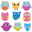 Set of cute owl birds - Stock Vector