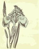 Ročník karta s lily. — Stock vektor
