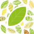 Green leaf. Vector background — Stock vektor