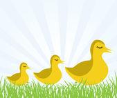 Illustraiton of young chicks — Stock Vector