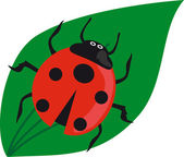 Ladybird on the green grass. — Stock Vector