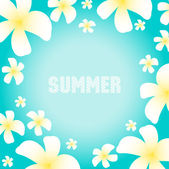 Summer background with frangipani flowers — Stock Vector