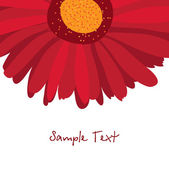 Burgundy red gerbera flower on a white background — Stock Vector