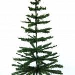 Christmas tree — Stock Photo #1302841