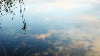 Reflet du ciel dans le lac — Vidéo