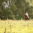 Medieval knight on horseback. — Stock Video