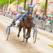 Annual short distance horse race in Amsterdam 2013 — Stock Photo