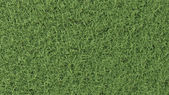 High-resolution texture of grass — Stock Photo
