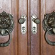 Door's locks and knockers — Stock Photo