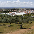 Panoramic View of Serpa, Portugal — Photo