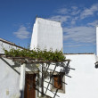 Monsaraz, typical whitewashed chimneys — Stock Photo