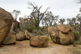 Wave Rock — Stock Photo