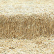 Haystack. — Stock Photo