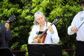 Folklife musicians. — Stock Photo
