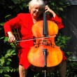 Stock Photo: Female cellist.