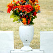 Stock Photo: Cemetery.