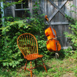 Acoustic cello. - Foto Stock