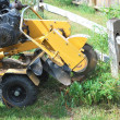 Stock Photo: Tree stump machine.