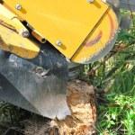 Tree stump machine. — Stock Photo