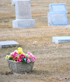 Cemetery. — Stock Photo