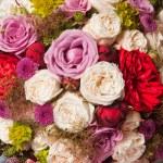 Flower background — Stock Photo #28537651