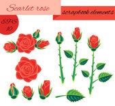 Scarlet rose scrapbook elements — Stock Vector