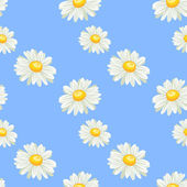 Camomile seamless pattern — Stock Vector