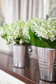 Lily of the valley in a bucket — Stock Photo