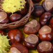 Chestnuts on autumn leaves - 图库照片