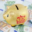 Piggy bank on banknotes from euro — Foto Stock