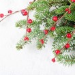 Christmas and New Year Border — Stock Photo