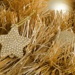 The christmas tree ornaments on gold — Stock Photo