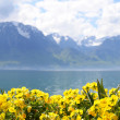 Flowers against mountains and lake Geneva from the Embankment in Montreux. Switzerland - ストック写真