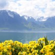 Flowers against mountains and lake Geneva from the Embankment in Montreux. Switzerland - Stock Photo