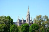 オーストリア フォルクスガルテン (ケルン) からウィーン市庁舎のビュー — ストック写真