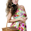 The beautiful girl with a basket — Stock Photo