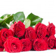 Bouquet of red roses isolated on white background — Stock Photo