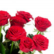 Stock Photo: Bouquet of red roses isolated on white background