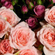 Bouquet  rose flower — Stock Photo