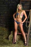 The woman in bikini on hay — Stock Photo
