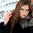 The beautiful woman brunette in winter — Stock Photo