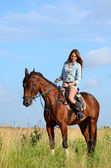 The woman on a horse in the field — Stock Photo