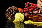 Autumn still-life - chestnuts and a mountain ash — Stock Photo