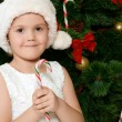 The little girl at christmas fur-tree — Stock fotografie
