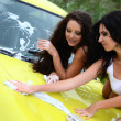 Women washes the car — Stock Photo #43511831