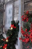 クリスマス ブランチ — ストック写真