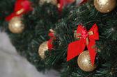 Vánoční větev — Stock fotografie