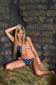 Woman in bikini on hay — Stock Photo